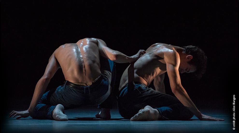 compagnie-ballets-indomptes